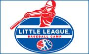 ll-baseball-camo-logo